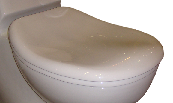 Soft closing TOILET SEAT FOR EAGO TB131