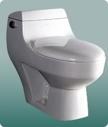 EAGO Toilet Seat Spare Parts HOME